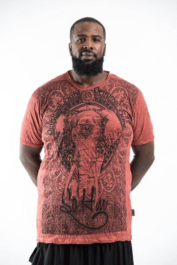 Plus Size Men's Wild Elephant T-Shirts Brick
